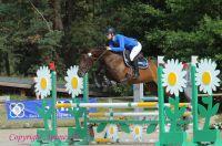 Photo poney : 1172362, r�f�rence : ASC_3523.JPG