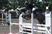 Photo poney : 1038551, r�f�rence : Poney_A053000.JPG
