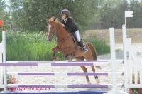 Photo poney : 1040218, r�f�rence : Poney_A055036.JPG