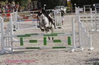 Photo poney : 1040438, r�f�rence : Poney_A055079.JPG