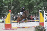 Photo poney : 1040012, r�f�rence : Poney_A055721.JPG