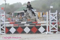 Photo poney : 1039393, r�f�rence : Poney_A055926.JPG