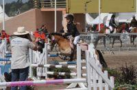 Photo poney : 1041190, r�f�rence : Poney_A056630.JPG