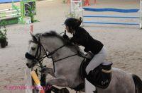 Photo poney : 1144756, r�f�rence : Poney_A196556.JPG
