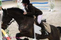 Photo poney : 1144603, r�f�rence : Poney_A196744.JPG