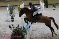 Photo poney : 1146212, r�f�rence : Poney_A198561.JPG