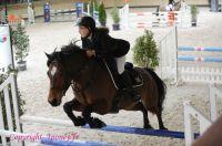 Photo poney : 1145893, r�f�rence : Poney_A198938.JPG