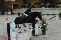 Photo poney : 1146157, r�f�rence : Poney_A199253.JPG