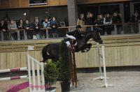 Photo poney : 1146063, r�f�rence : Poney_A199390.JPG