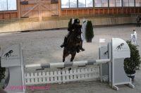 Photo poney : 1147030, r�f�rence : Poney_A199463.JPG