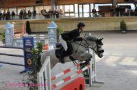 Photo poney : 1146949, r�f�rence : Poney_A199582.JPG