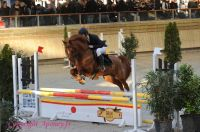 Photo poney : 1147835, r�f�rence : Poney_A200401.JPG