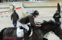 Photo poney : 1147479, r�f�rence : Poney_A200879.JPG