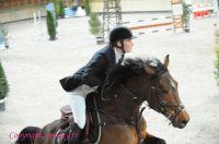 Photo poney : 1147325, r�f�rence : Poney_A201075.JPG