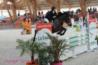 Photo poney : 1162190, r�f�rence : Poney_A213566.JPG