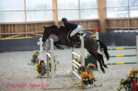 Photo poney : 1162701, r�f�rence : Poney_A214066.JPG