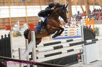 Photo poney : 1163755, r�f�rence : Poney_A215068.JPG