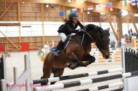 Photo poney : 1163547, r�f�rence : Poney_A215353.JPG
