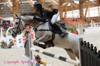Photo poney : 1162989, r�f�rence : Poney_A215730.JPG