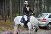 Photo poney : 1170425, r�f�rence : Poney_A219881.JPG