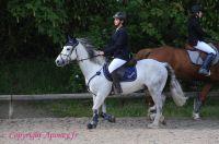 Photo poney : 1170523, r�f�rence : Poney_A220323.JPG