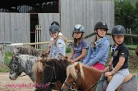 Photo poney : 1173305, r�f�rence : Poney_A223969.JPG
