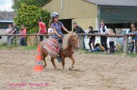 Photo poney : 1172833, r�f�rence : Poney_A224074.JPG