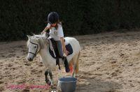 Photo poney : 1172440, r�f�rence : Poney_A224481.JPG
