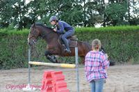Photo poney : 1172967, r�f�rence : Poney_A225567.JPG