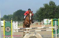 Photo poney : 1176496, r�f�rence : Poney_A229726.JPG