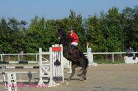Photo poney : 1176382, r�f�rence : Poney_A229876.JPG