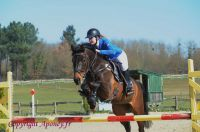 Photo poney : 1176731, r�f�rence : Poney_A230912.JPG