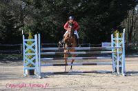 Photo poney : 1176906, r�f�rence : Poney_A231635.JPG
