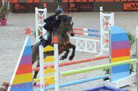 Photo poney : 1161835, r�f�rence : Poney_Di_D000585.JPG