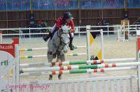 Photo poney : 1161637, r�f�rence : Poney_Di_D000882.JPG