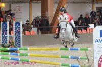 Photo poney : 1163455, r�f�rence : Poney_Di_D001434.JPG