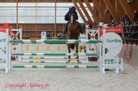 Photo poney : 1164083, r�f�rence : Poney_Di_D001702.JPG