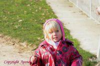 Photo poney : 1164299, r�f�rence : Poney_Di_D002017.JPG