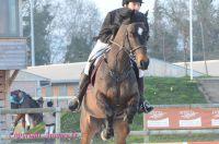 Photo poney : 1164382, r�f�rence : Poney_Di_D002078.JPG