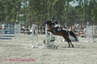 Photo poney : 1039225, r�f�rence : poney_Arnaud_07082.JPG