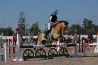 Photo poney : 54168, r�f�rence : poney_BSC_156729.JPG