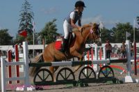 Photo poney : 54099, r�f�rence : poney_BSC_156859.JPG