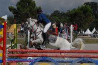 Photo poney : 54724, r�f�rence : poney_BSC_158508.JPG