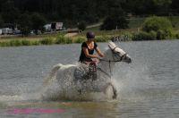 Photo poney : 53145, r�f�rence : poney_BSC_159304.JPG