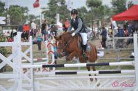 Photo poney : 1039844, r�f�rence : poney_Fred_006447.JPG