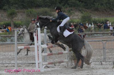 Photo poney : 56768, r�f�rence : Poney_161608.JPG