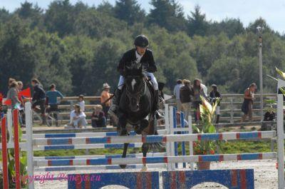 Photo poney : 56600, r�f�rence : Poney_162572.JPG