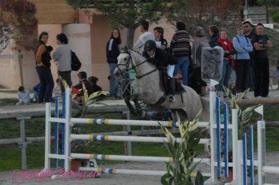 Photo poney : 56402, r�f�rence : Poney_162675.JPG