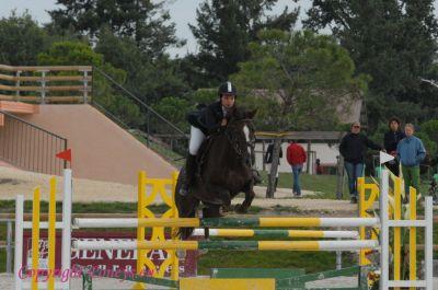 Photo poney : 56011, r�f�rence : Poney_162947.JPG