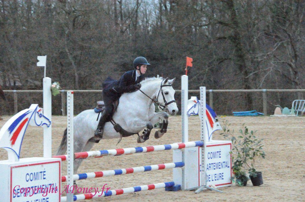 poney elite